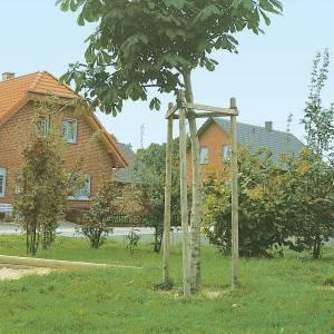 Pflanzpfahl 4 cm Durchmesser, Nadelholz
